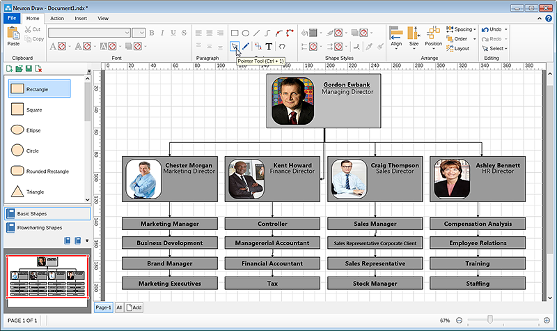 Organizational chart final result before layout
