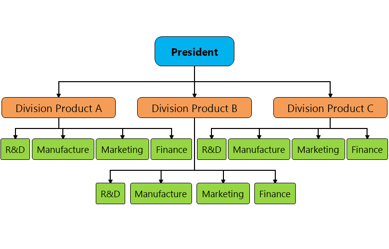 Divisional Structure Organization Chart Template